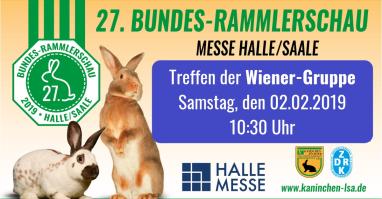 Die Wiener-Gruppe trifft sich an den Gehegen ihrer Wiener-Kaninchen