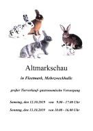 Plakat zur offenen Altmarkschau 2019